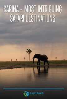 Karina: Most Intriguing Safari Destinations