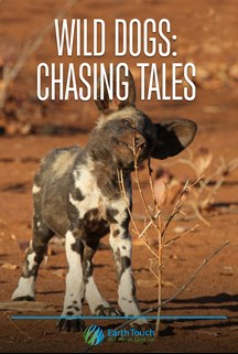 Wild Dogs: Chasing Tales