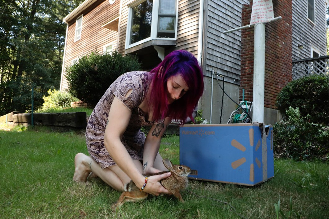 wildlife-rehabilitator-rabbit_2020-01-13.jpg