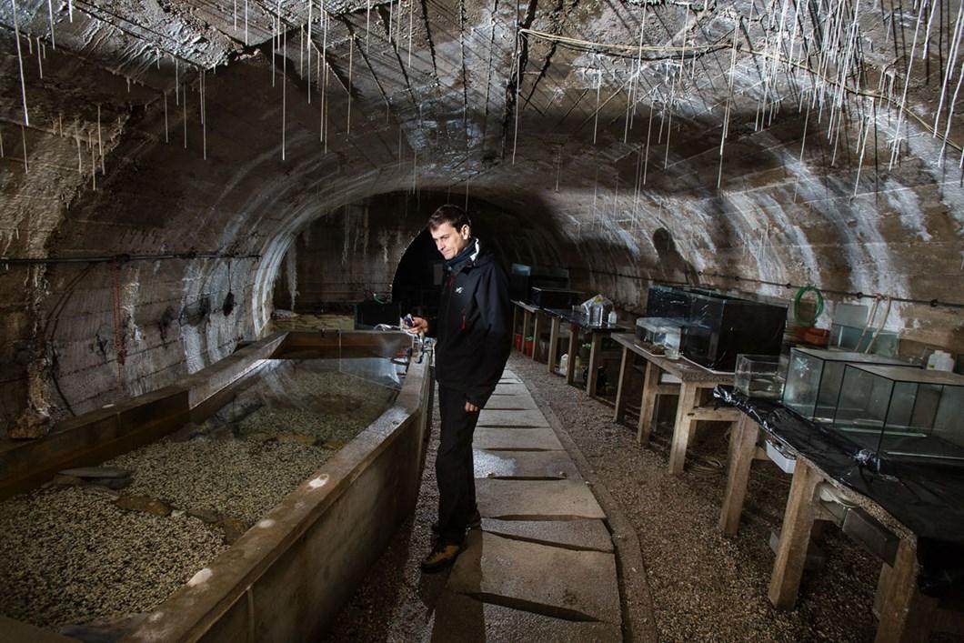 olm-cave-lab_2021-01-26.jpg