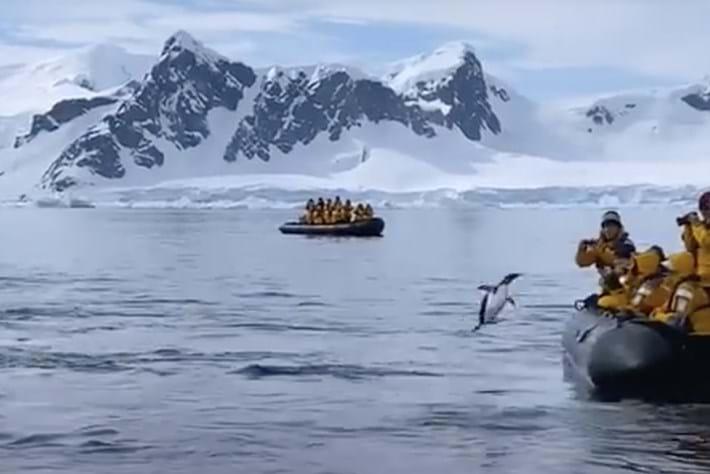 penguin-boat-leap_page_2021-03-17.jpg