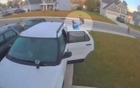 Meme-worth footage of man fending off bobcat sets Twitter alight