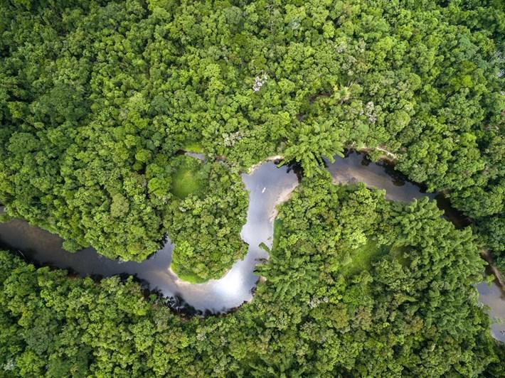 river-ecosystem_2021-04-21.jpg