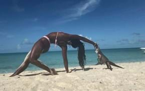 Watch: Iguana hilariously nibbles yoga instructor's finger (and reminds us why feeding animals can be problematic)