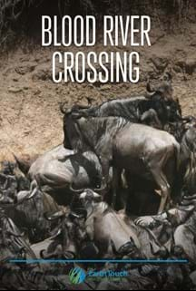 Blood River Crossing