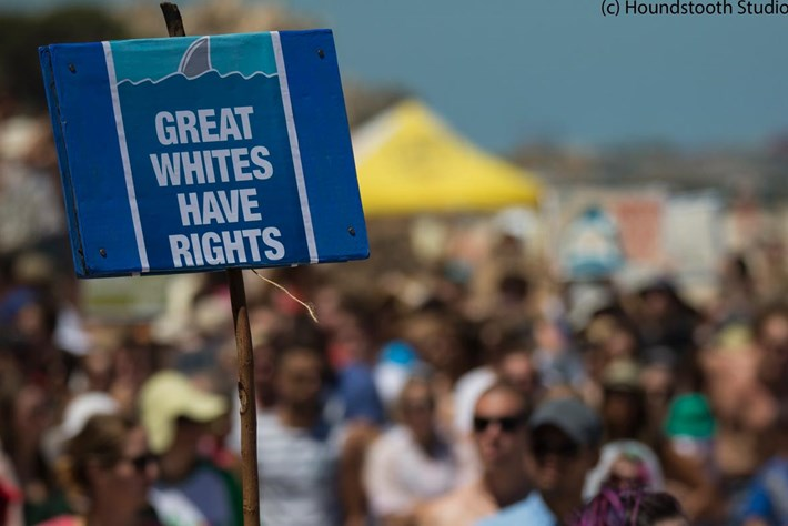 2014 02 03 Shark Cull Protest Banner 4