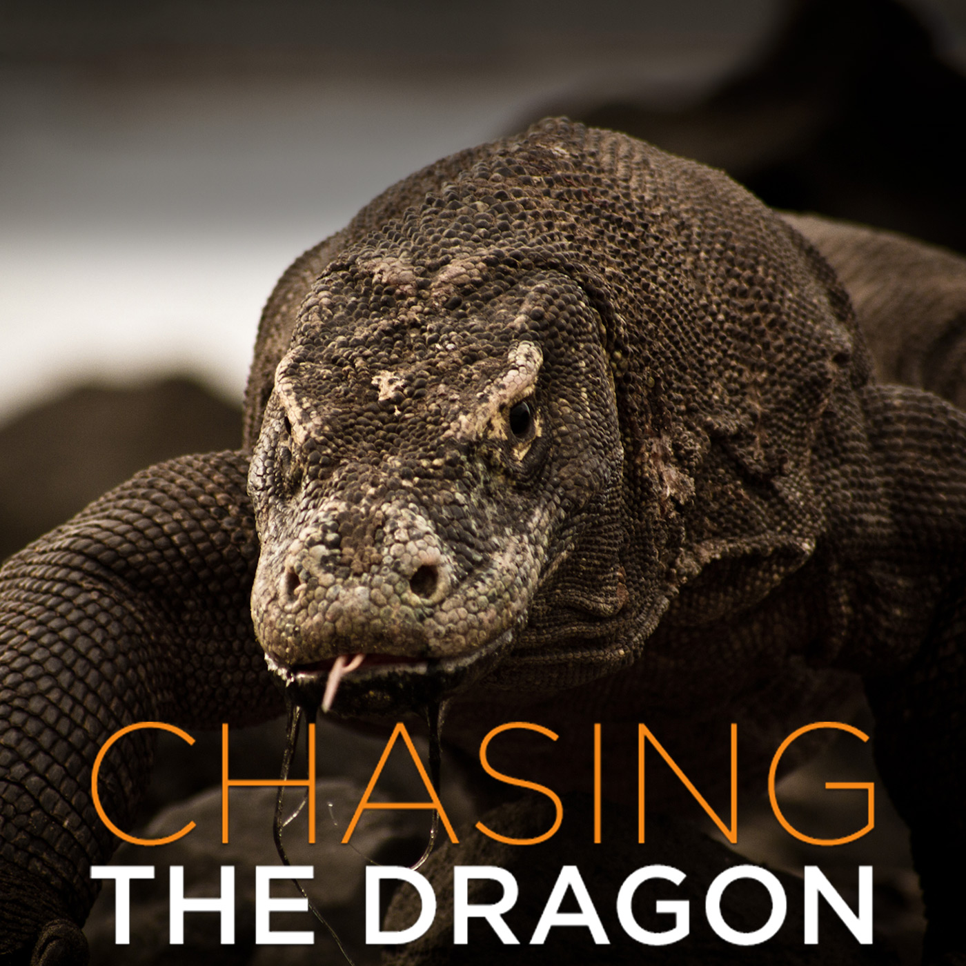 Chasing the Dragon (HD)