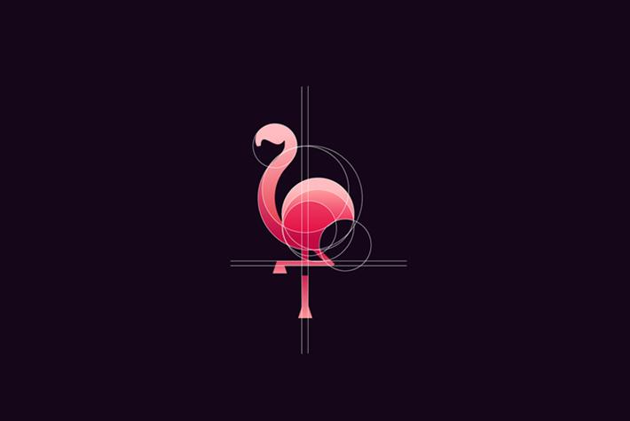 Flamingo Logo Circles Tom Anders Watkins 2014 16 07
