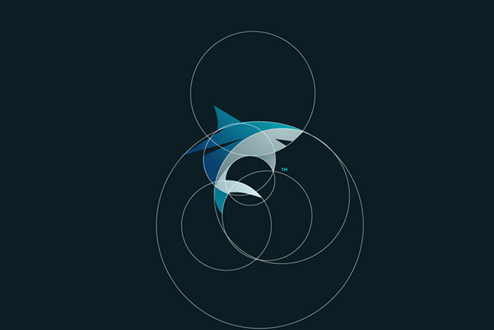 Shark Logo Circles Tom Anders Watkins 2014 16 07