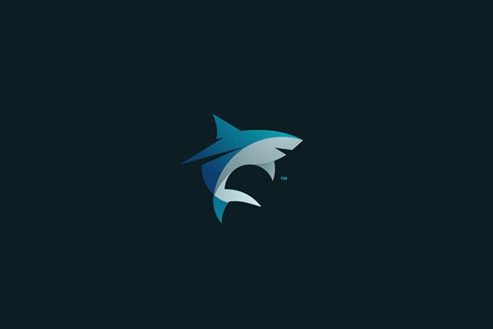 Shark Logo Tom Anders Watkins 2014 16 07