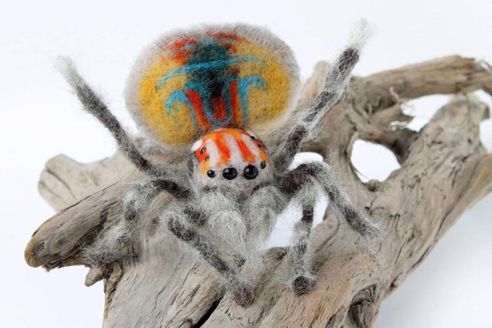 felt animals-spider-2014-9-1.jpg