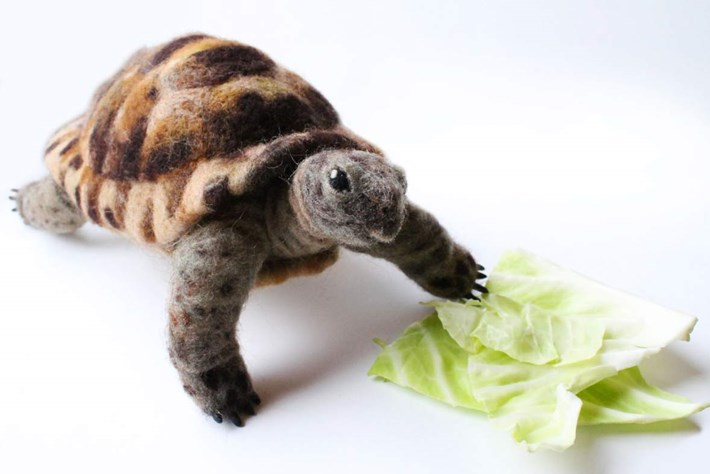 felt animals-tortoise-2014-9-1.jpg