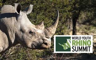 World Youth Rhino Summit: Future conservationists rally for rhinos