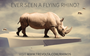 Q&A: All the facts about the biggest rhino relocation in history