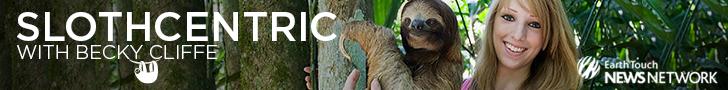 Slothcentric
