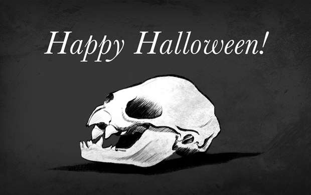Halloween Quiz Time: Let's play 'Guess the skull!'