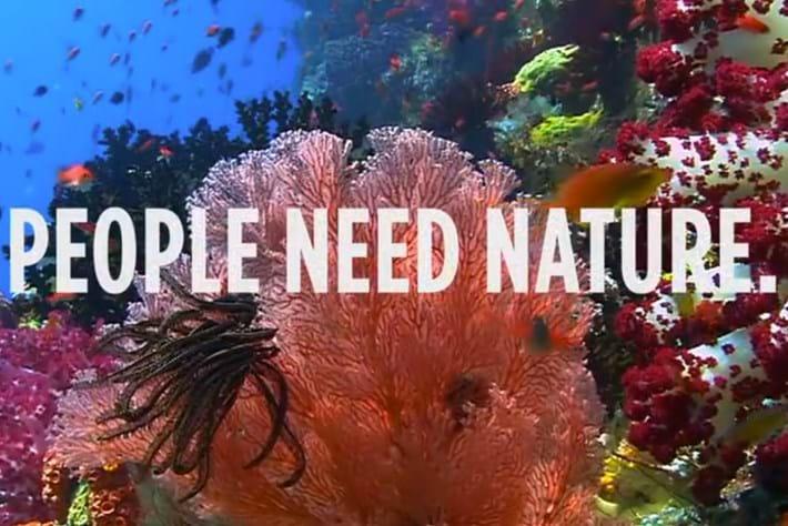 Vampire Diaries star Ian Somerhalder speaks up for nature