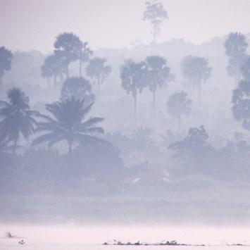 Congo Trees Smoke 2014 11 05