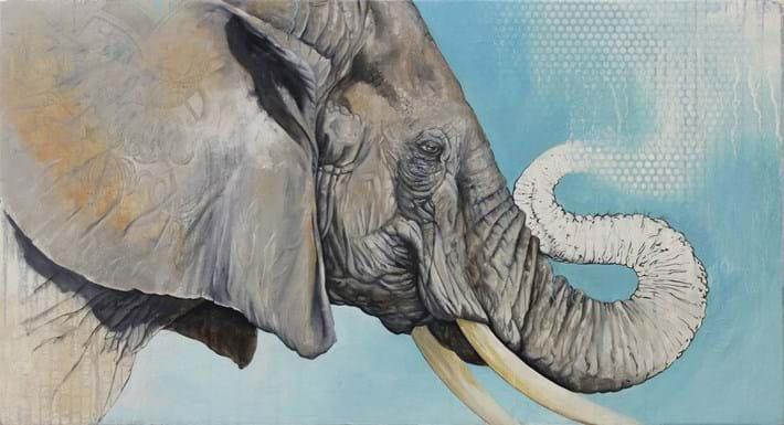 Bryan Holland Elephant 2014 11 12