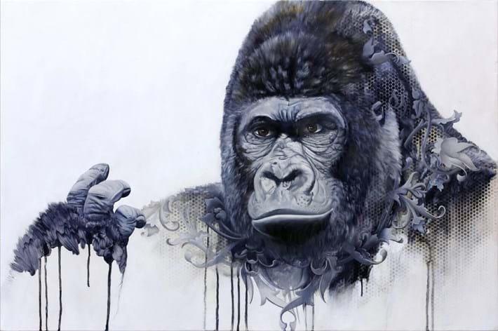 Bryan Holland Gorilla 2014 11 12