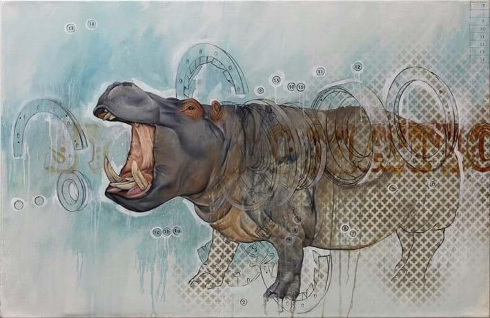 Bryan Holland Hippo 2014 11 12