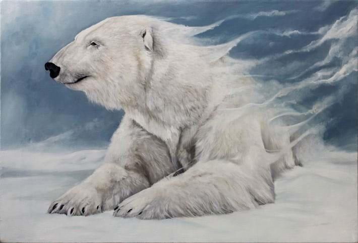 Bryan Holland Polar Bear 2014 11 12