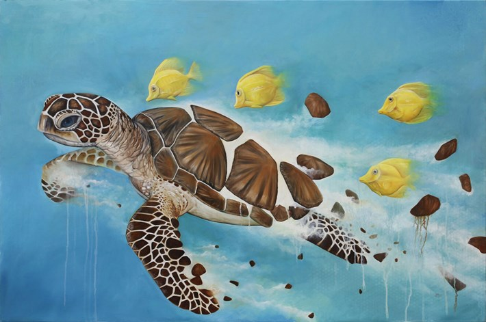 Bryan Holland Turtle 2014 11 12