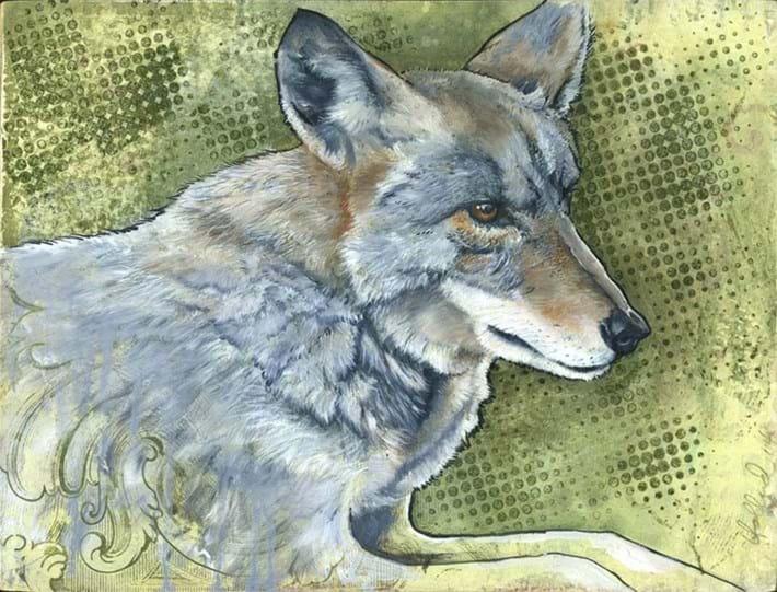 Bryan Holland Wolf 2014 11 12