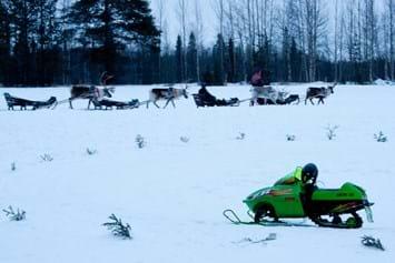 reindeer sled_2014_11_24
