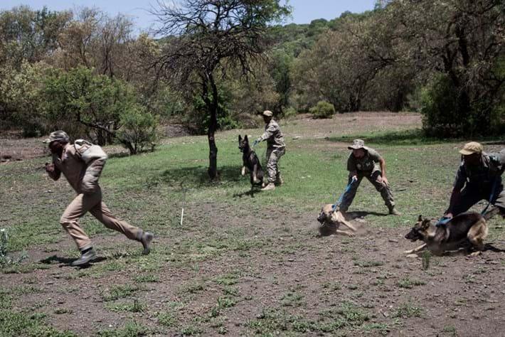 Dog Poachers Training Exercise 2014 11 28
