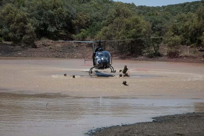 Dog In The Water Chopper Jump 2014 11 28