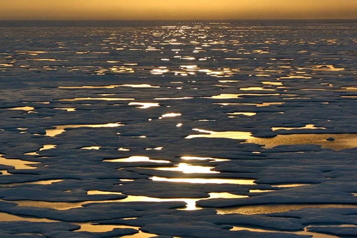Arctic sunrise_header_2014_12_11