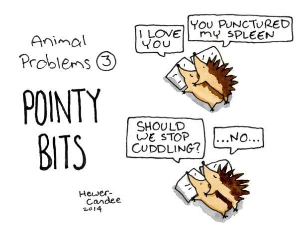 animal problems-pointy bits-2015-1-12