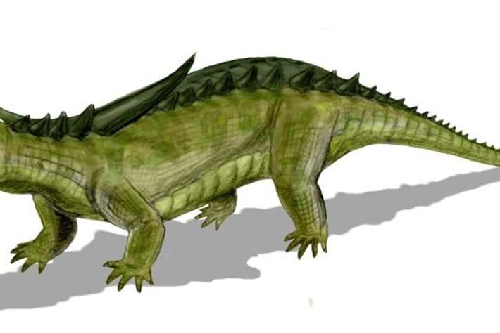 Desmatosuchus_2015_01_28