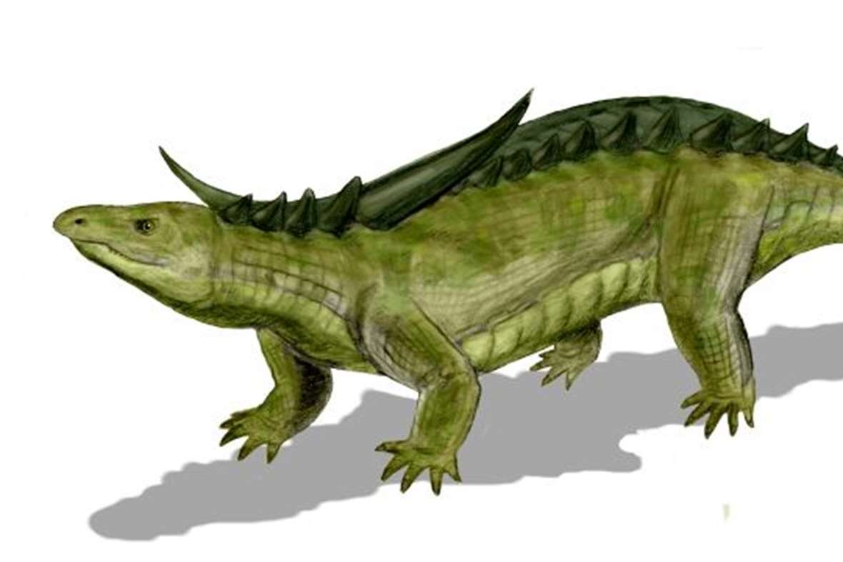 Prehistoric Crocodiles, meet these ancient beasts ...