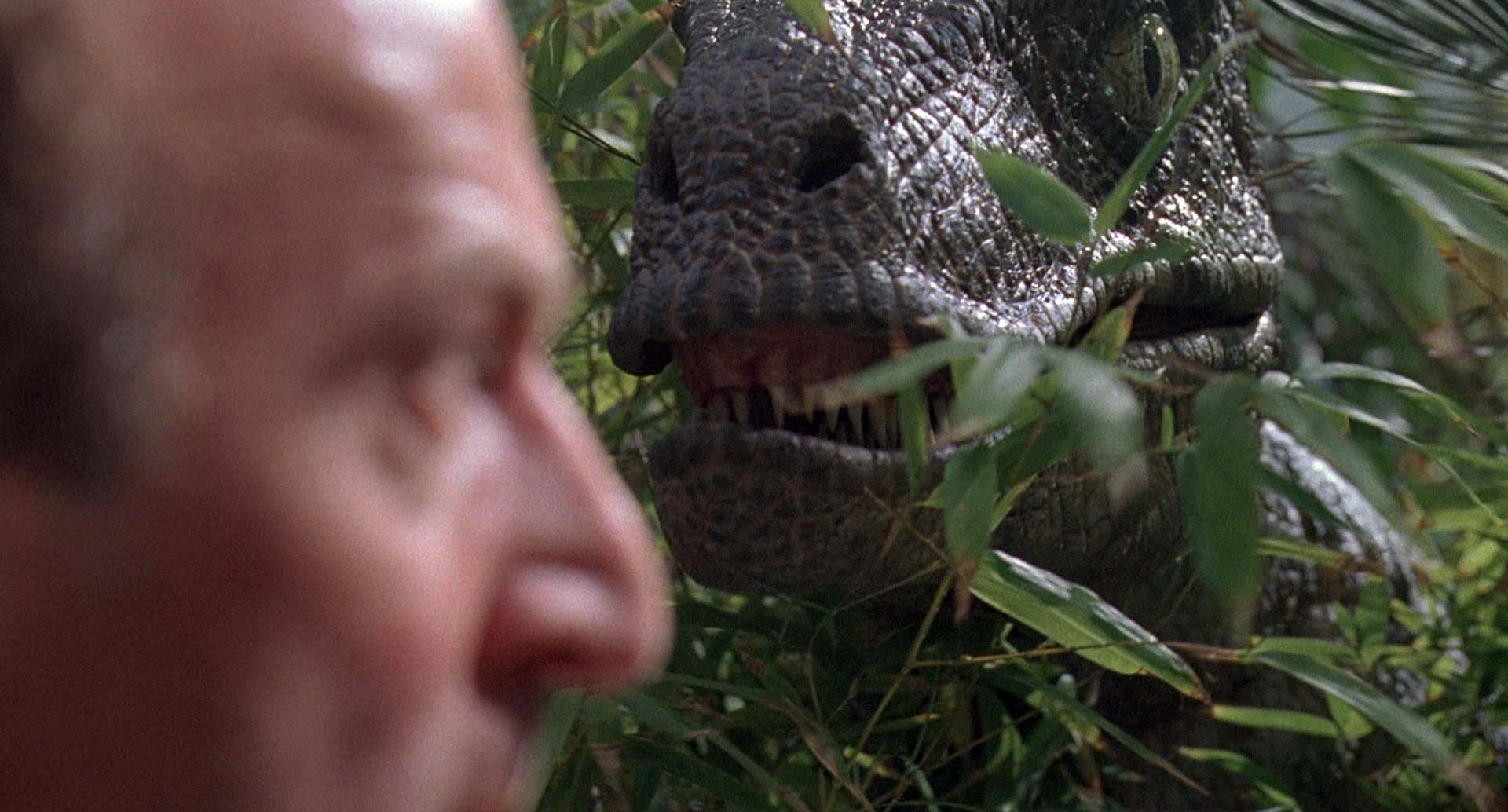 Jurassic Park's velociraptors sound a lot like mating ...