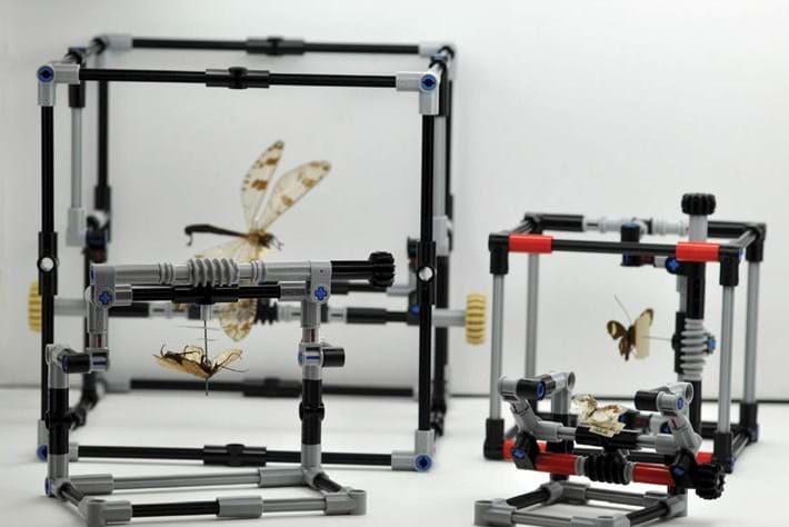 Scientists have a new tool for examining insects ... and it's made from Lego!