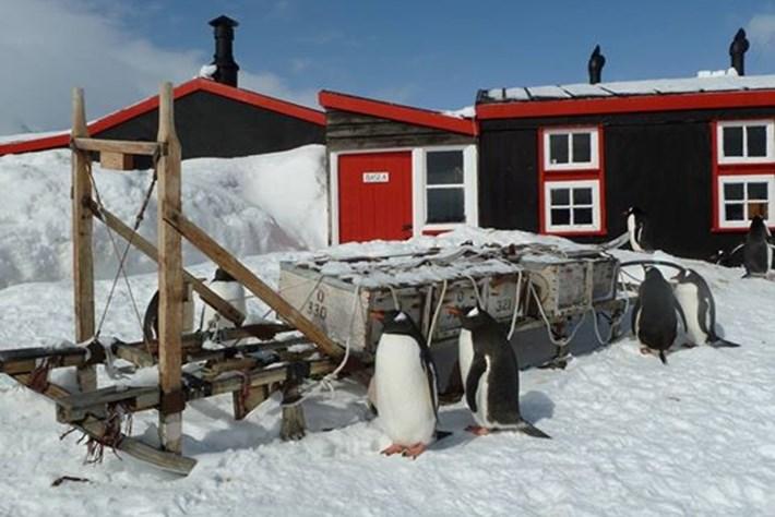 Antarctica post office_2015_02_18